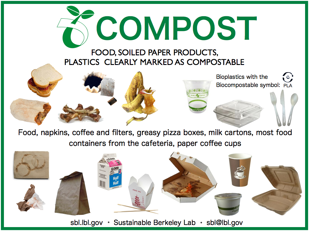 What Food Can Go In A Compost Heap